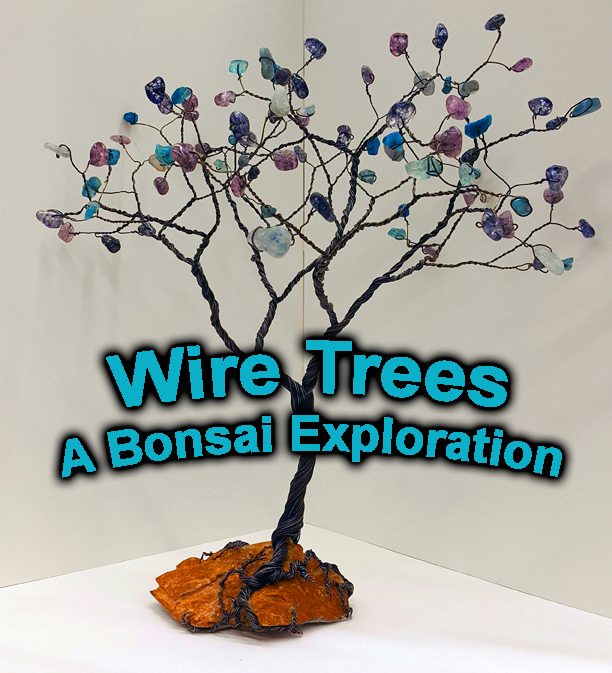Exploring Bonsai Art Ed Guru